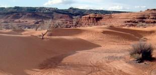 White Wash Sand Dunes